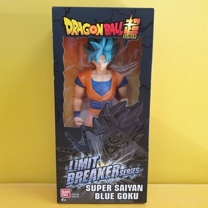 Immagine di DRAGON BALL - Super Sayan Blue Goku #36730